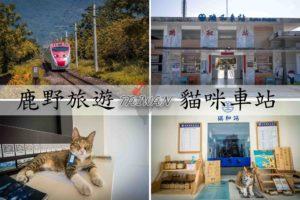 『台東鹿野』最有溫度的無人招呼站,瑞和車站(時光驛站)|貓咪駐守的火車站咖啡館