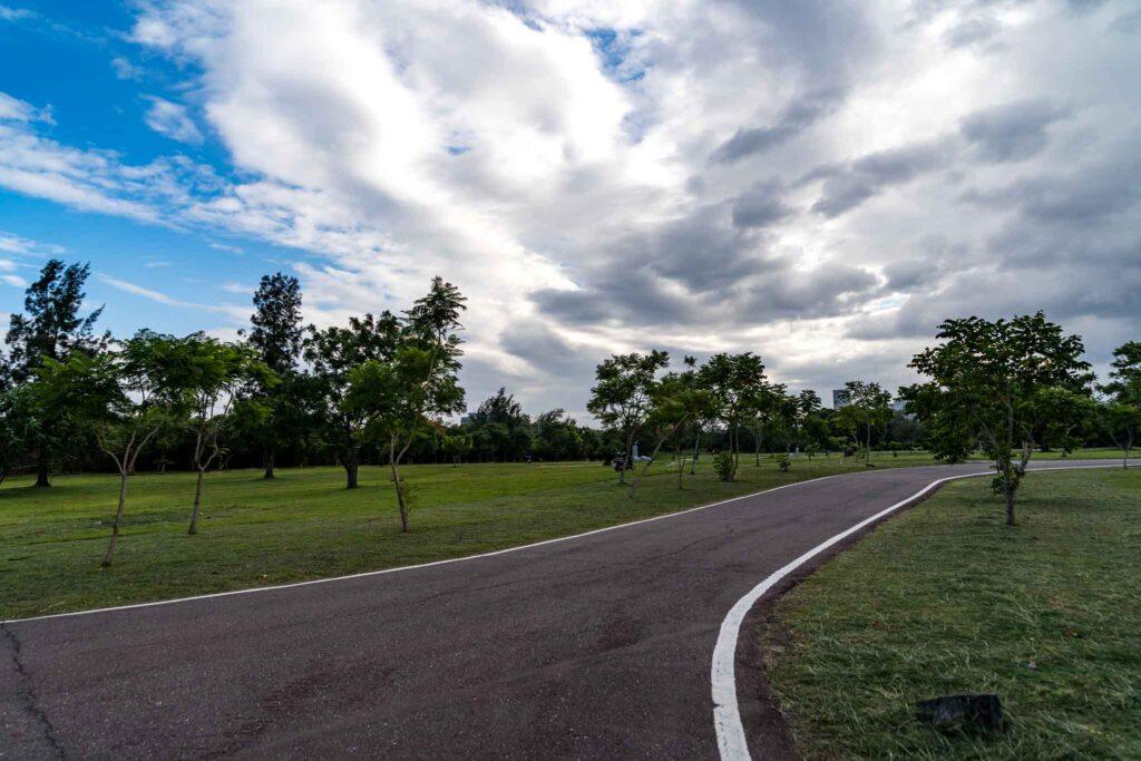 台東森林公園大草原
