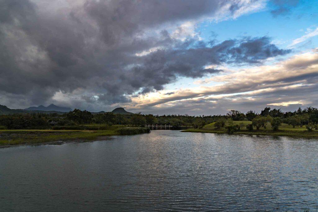 台東森林公園 鴛鴦湖