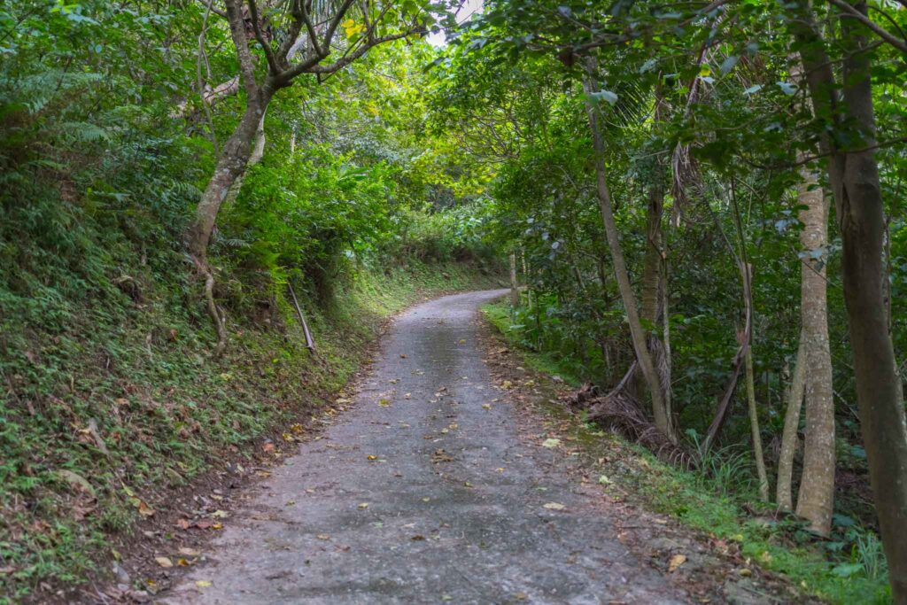 頂岩灣四格山步道交通