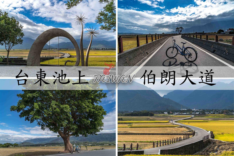 台東池上騎單車必玩景點,包含交通資訊、租自行車價格一次搞定