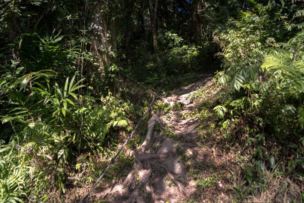 都蘭山登山步道