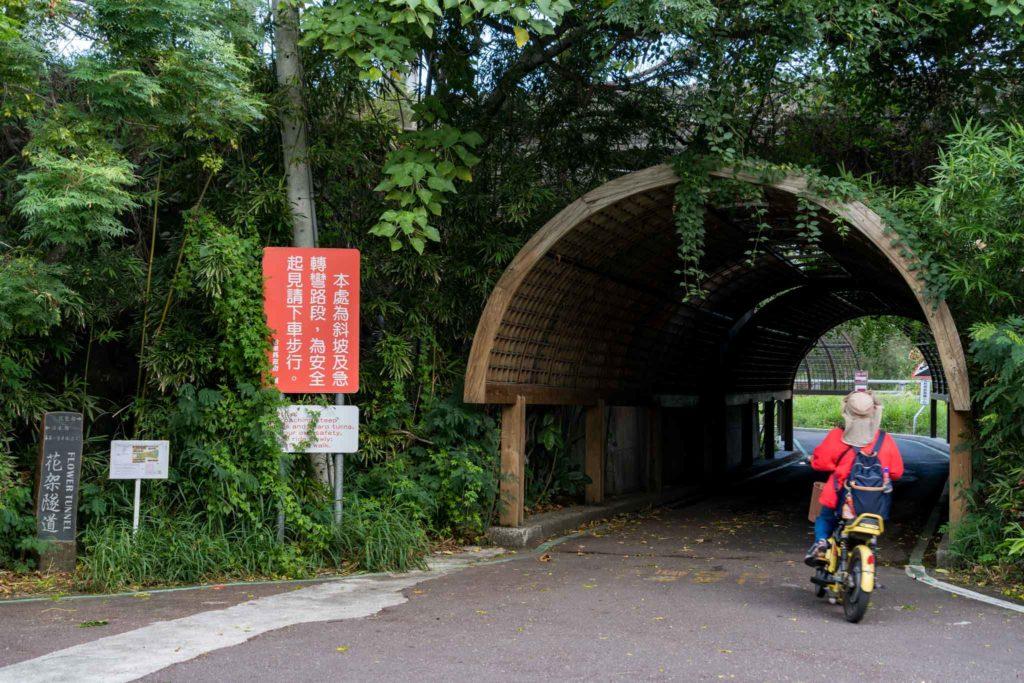 台東森林公園花架隧道