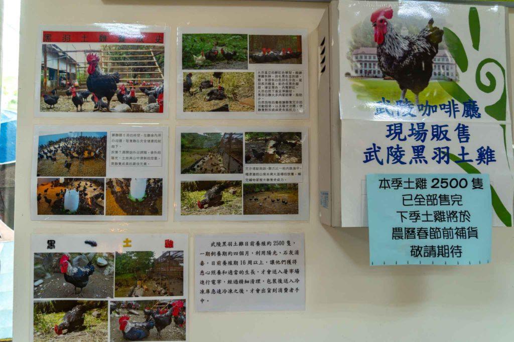 武陵外役監獄農場/台東戒治所咖啡館