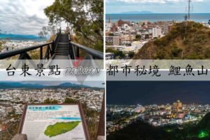 Read more about the article 『台東市區景點』最輕鬆登山步道,鯉魚山公園,360度環繞市景超療癒