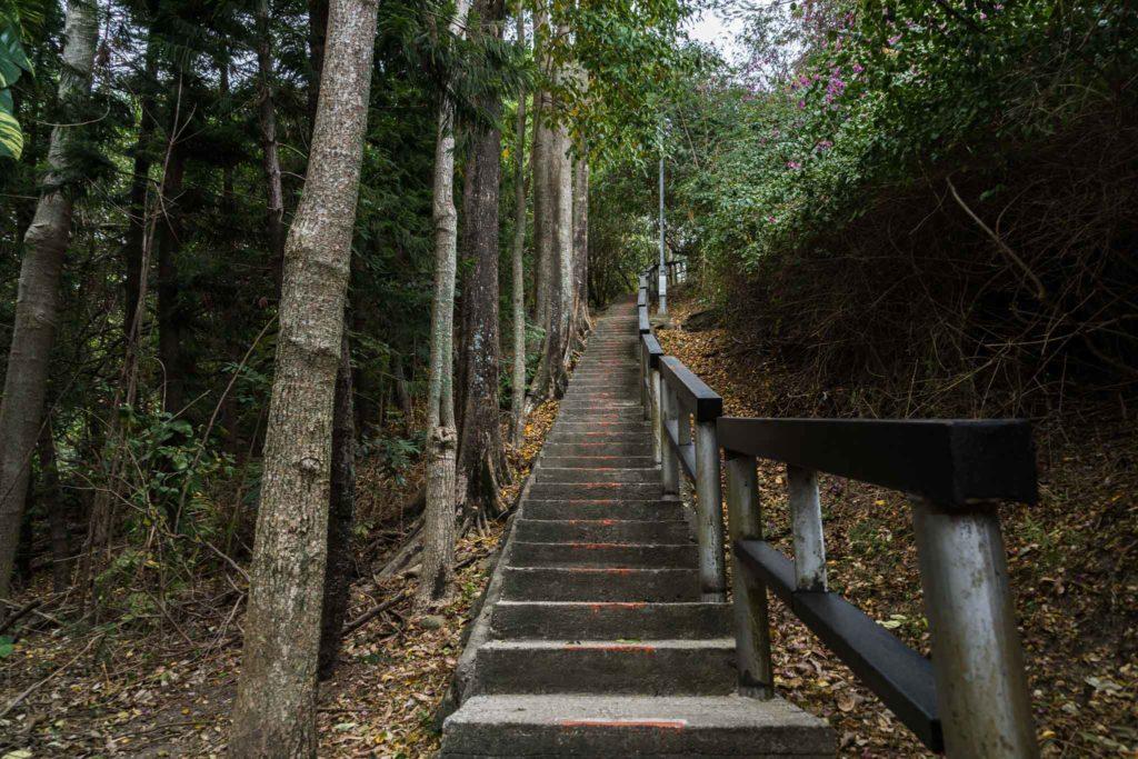 鯉魚山登山步道