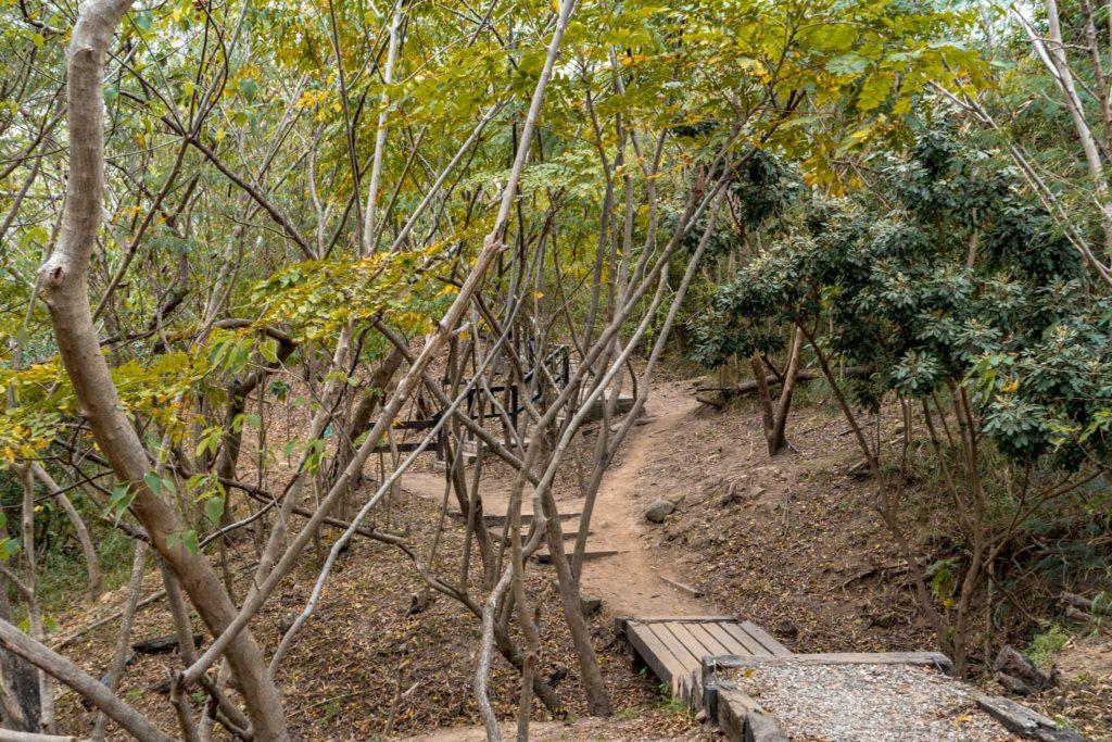 鯉尾觀景平台