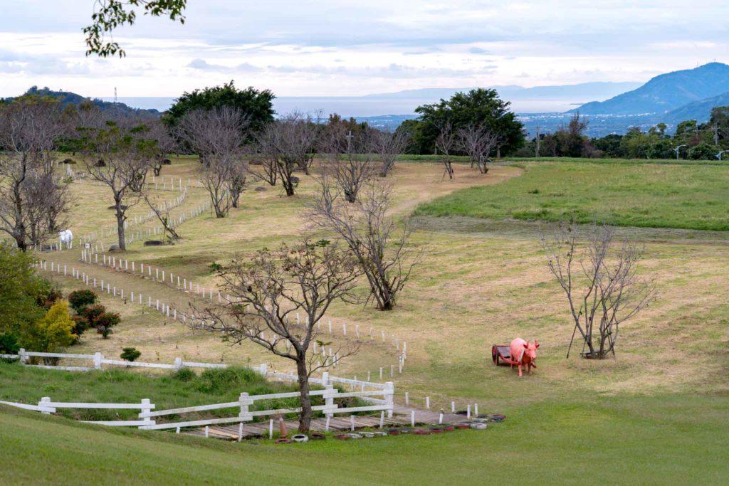 初鹿牧場往生態池方向